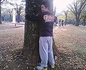 大木にしがみつて