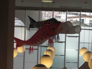 ☆鯉のぼり